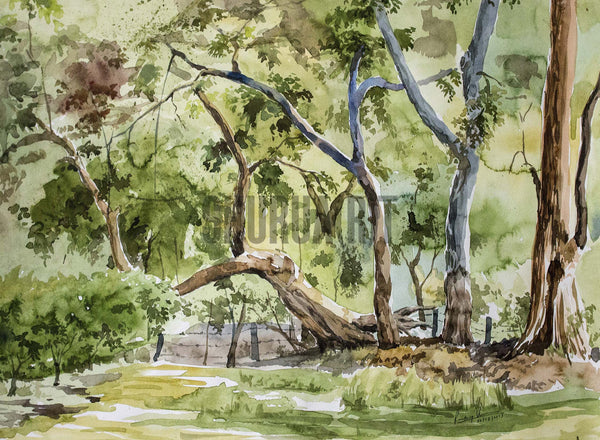 Painting of a park in Banaras Hindu University