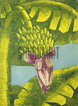 Load image into Gallery viewer, A Banana Tree