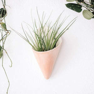 Medium Ceramic Wall Planter