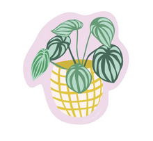 Load image into Gallery viewer, House Plant Vinyl Sticker Set