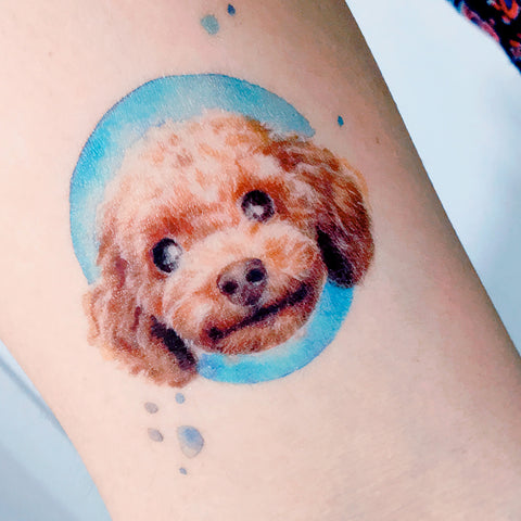 Poodle Tattoo Dog Tattoo Doggie Tattoo Pet Tattoo Animal Tattoo Portrait Tattoo Watercolor Tattoo Sticker Tatouage Temporary Tattoo HK Hong Kong Vintage Classic 復古美式經典水彩燕子刺青紋身 LAZY DUO Tattoo Sticker 香港紋身貼紙 刺青圖案 紋身師 印刷訂做客製 Custom Temporary Tattoo artist HK tattoo shop Hong Kong