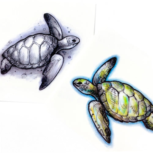 Sea Turtle Tattoos - LAZY DUO TATTOO