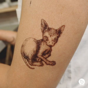 Sphynx Cat & Donut Pug Tattoos - LAZY DUO TATTOO