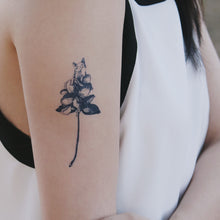 Load image into Gallery viewer, Silly Cat with Flower Tattoo - LAZY DUO TATTOO