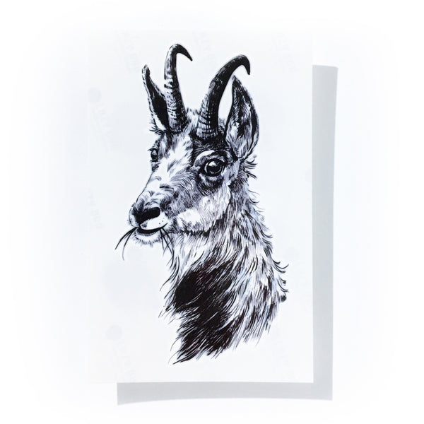 Black Goat Tattoo Animal Tattoo LAZY DUO Tattoo Sticker 香港紋身貼紙 刺青圖案 紋身師 印刷訂做客製 Custom Temporary Tattoo artist HK tattoo shop Hong Kong 迷你刺青 韓式刺青紋身 small tattoo design Minimal Tattoo little tattoo idea sketchy tattoo floral tattoo ankle wrist tattoo back tattoo Taiwan