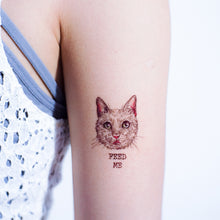 Load image into Gallery viewer, White Cat FEED ME + Pit Bull Tattoos - LAZY DUO TATTOO