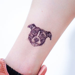 White Cat FEED ME + Pit Bull Tattoos - LAZY DUO TATTOO