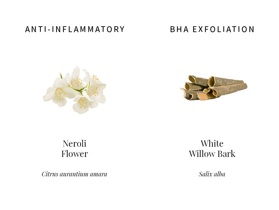 ingredients information, neroli, orange blossom, anti-inflammatory, sensitive skin, redness, white willow bark, bha, exfoliation, pore clearing, brightening, illustration