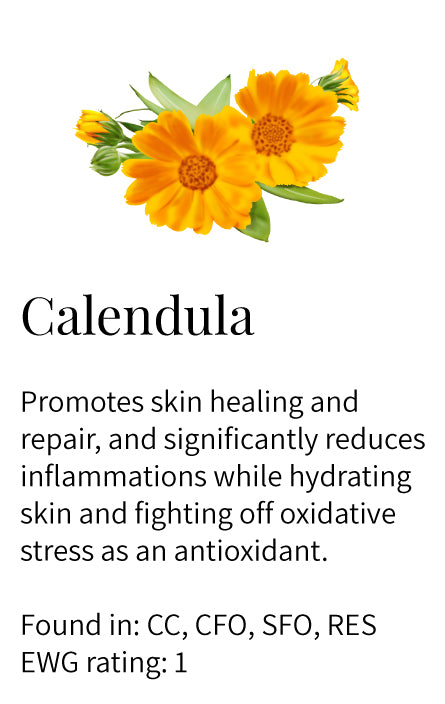 calendula, healing, repair, inflammation fighting, hydrating, nourishing, antioxidant