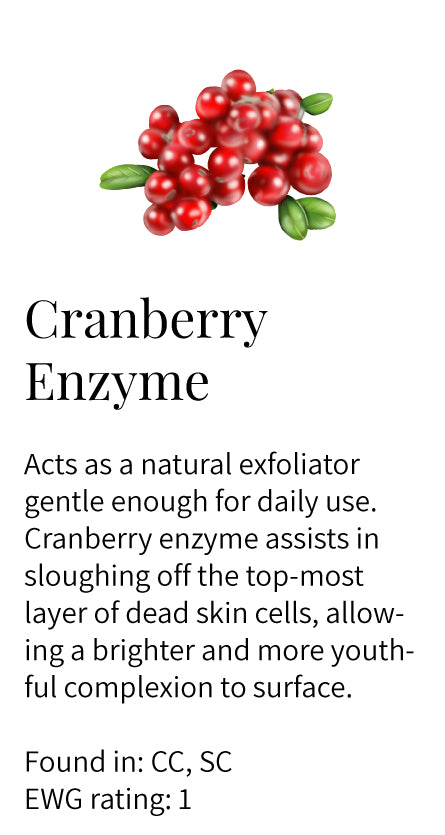 cranberry enzyme, natural exfoliator, dead skin cells, brightening, youthful complexion, rejuvenating, cleansers