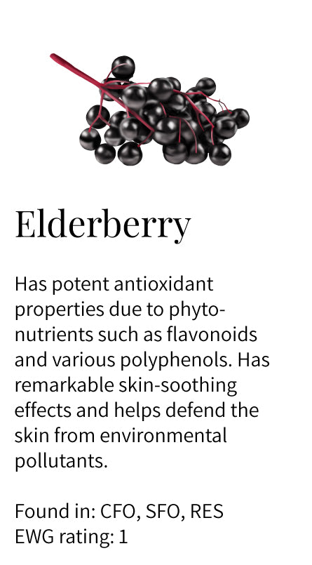 elderberry, antioxidant, phytonutrients, flavonoids, soothing, protection, environmental pathogens defense