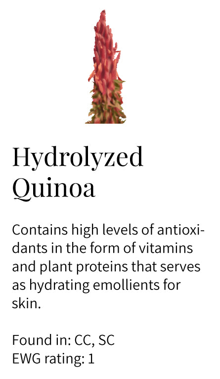 hydrolyzed quinoa, antioxidants, vitamins, plant protein, hydration, emollient, cleansers