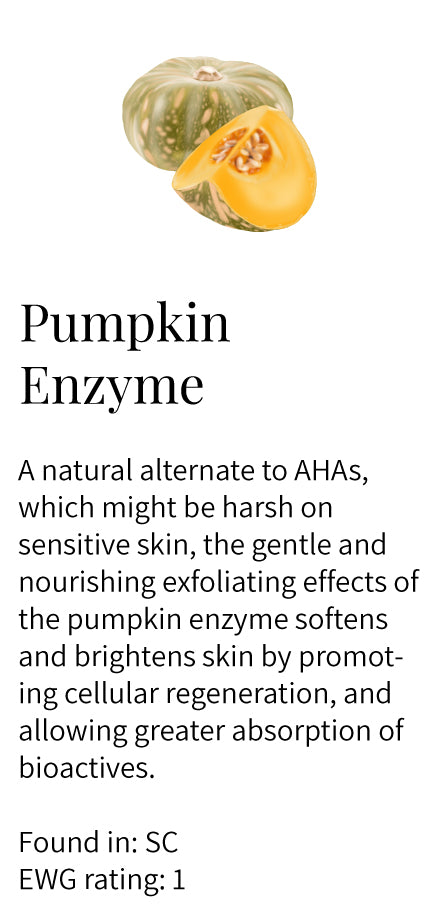 Pumpkin enzyme, natural alternative to AHA, gentle, nourishing, softening, brightening, cellular regeneration, greater absorption, Soothe Cleanser