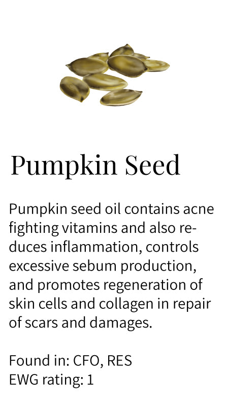pumpkin seed, collagen, acne fighting, anti-inflammatory, controls sebum production, regeneration, scar repairing