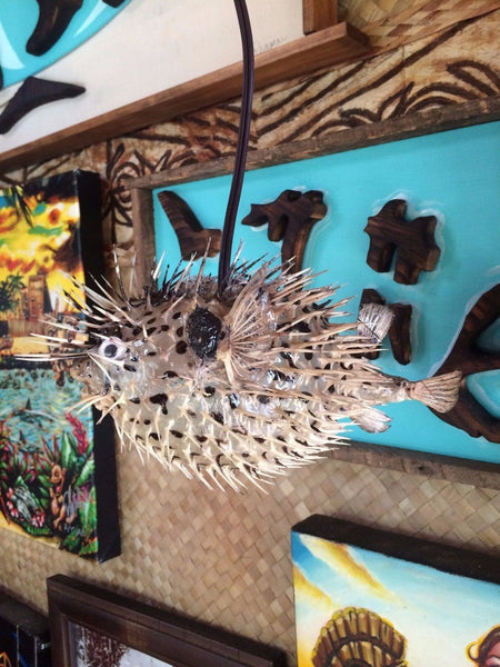 "NEW 4""-5"" Puffer Fish Lamp w/color changing LED Light Tiki bar Smokin Tikis"