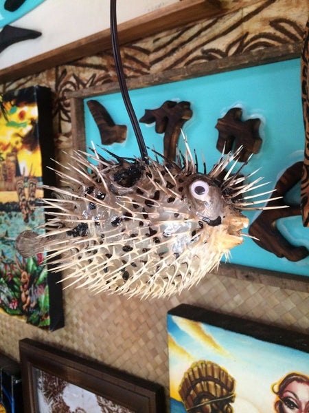 "NEW 8"" Puffer Fish Lamp w/color changing LED Light Tiki bar Smokin Tikis n26"