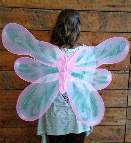 Adult Bug Fairy Wings