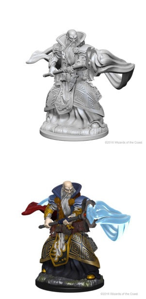 D&D UNPAINTED MINIS: HUMAN MALE WIZARD