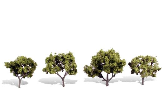 "EARLY LIGHT 2""-3"" - 4/PK CLASSIC TREES"