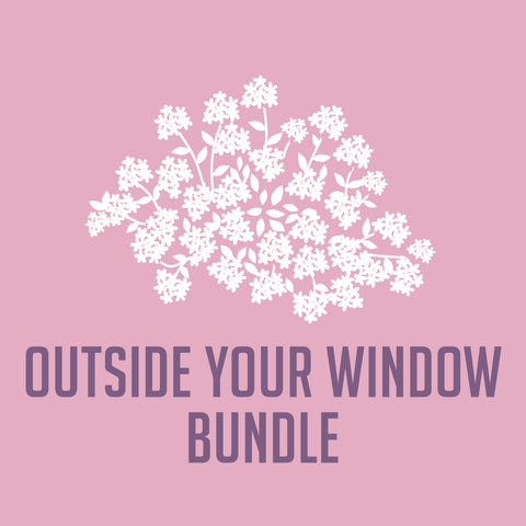 Outside Your Window Bundle