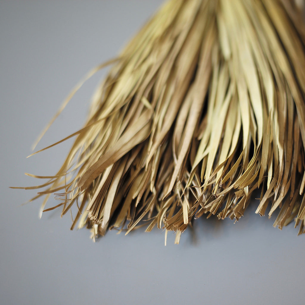 palm leaf brush