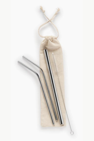 reusable straws gift set