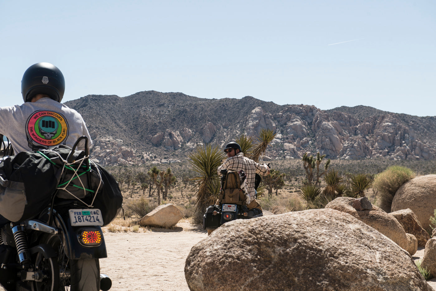 What to do in Joshua Tree National Park