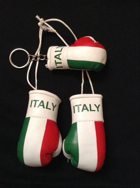 Italy Italian Flag Mini Boxing Gloves