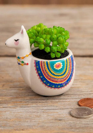Llama colorful mini faux succulent - Candle Queen Candles