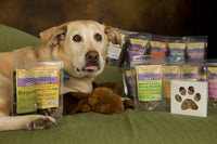 Homestyle made from scratch dog treats & meals