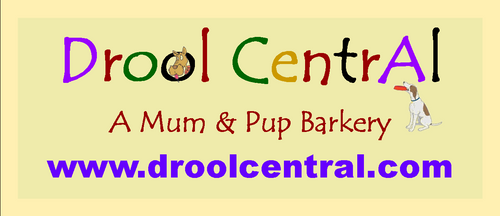Drool Central: A Mum & Pup Barkery
