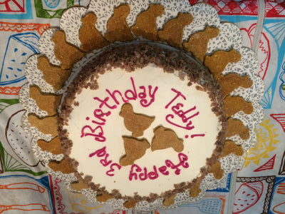 pumpkin chicken birthday cake for dogs