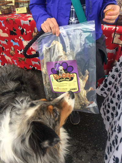 Murphy, an Australian Sheep dog, shops for his favorite wild Alaska cod skins.