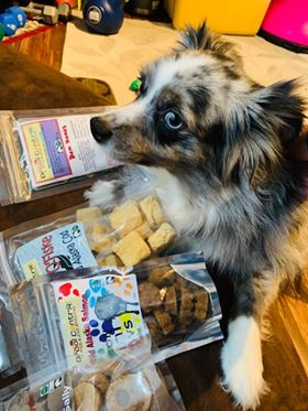 Kaya, a mini Australian Shepherd, loves Lot O'Fiske, a single ingrediet treat: Wild Alaska cod.