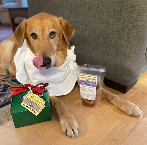Loyal Drooler, Loki, a lab retriever mix, prefers his wild Alaska salmon jerky any time.