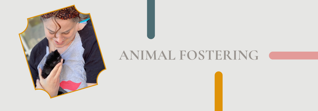 Animal Fostering by Brindle Market