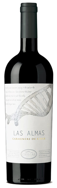 "2010 Chilcas ""Las Almas"" Red Blend Maule Valley Chile (Case of 6)"