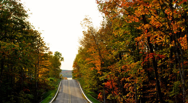 The Perfect Day of Fall Color in Leelanau County