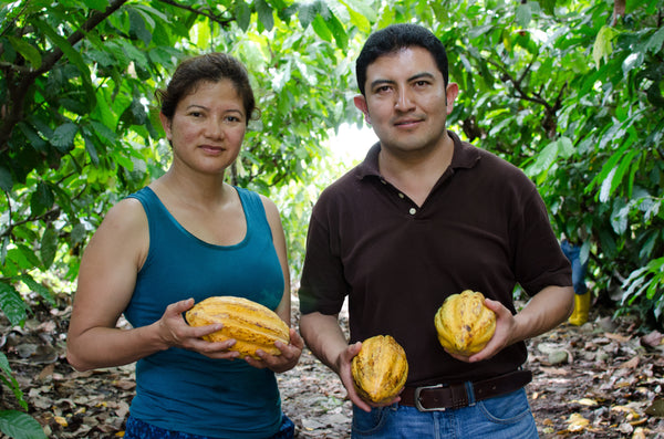 Ecuador to Michigan | A Day With Our Chocolate Producers