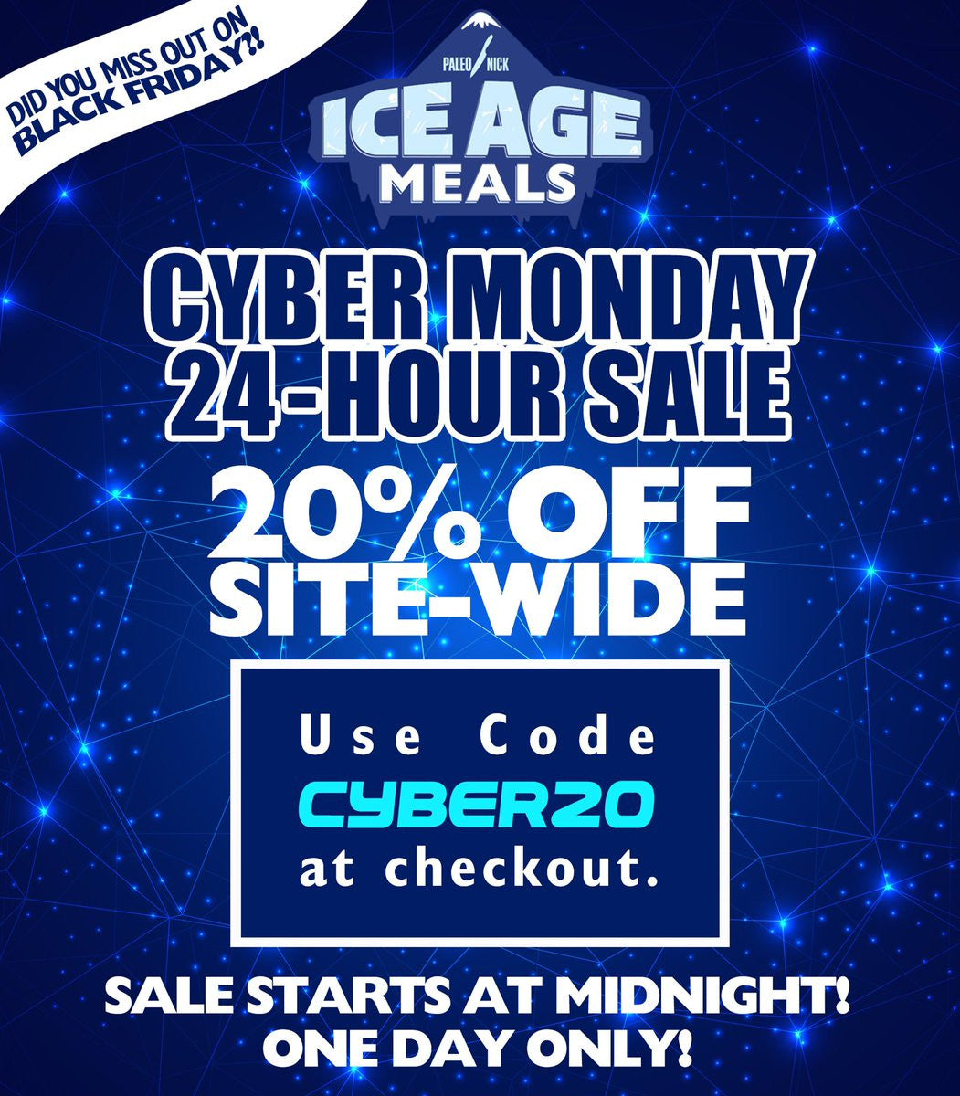 Ice Age Meals Does Cyber Monday