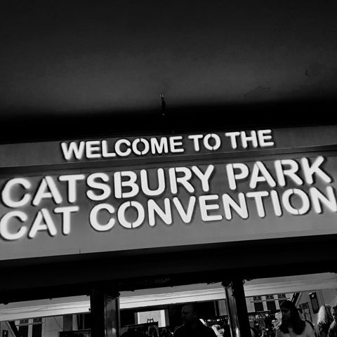 Catsbury Park Cat Convention - Unique visit to Asbury Park, NJ
