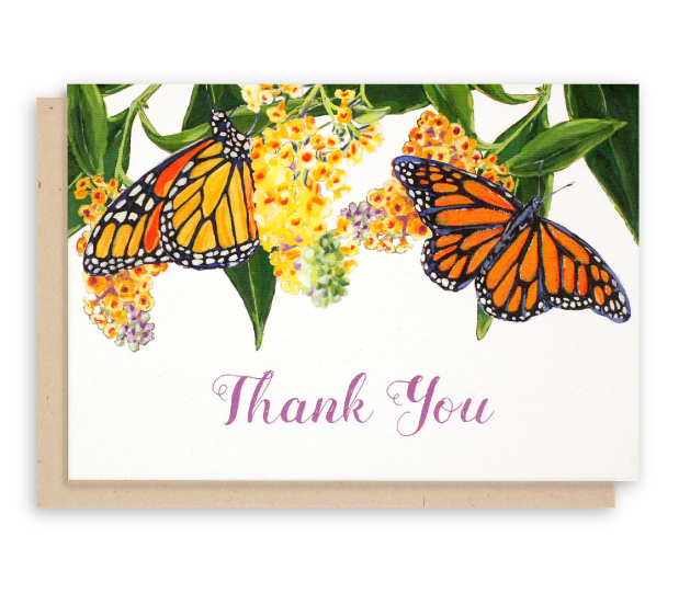 Monarch Butterfly Thank You Cards Butterfly Bush Flowers Buddlea
