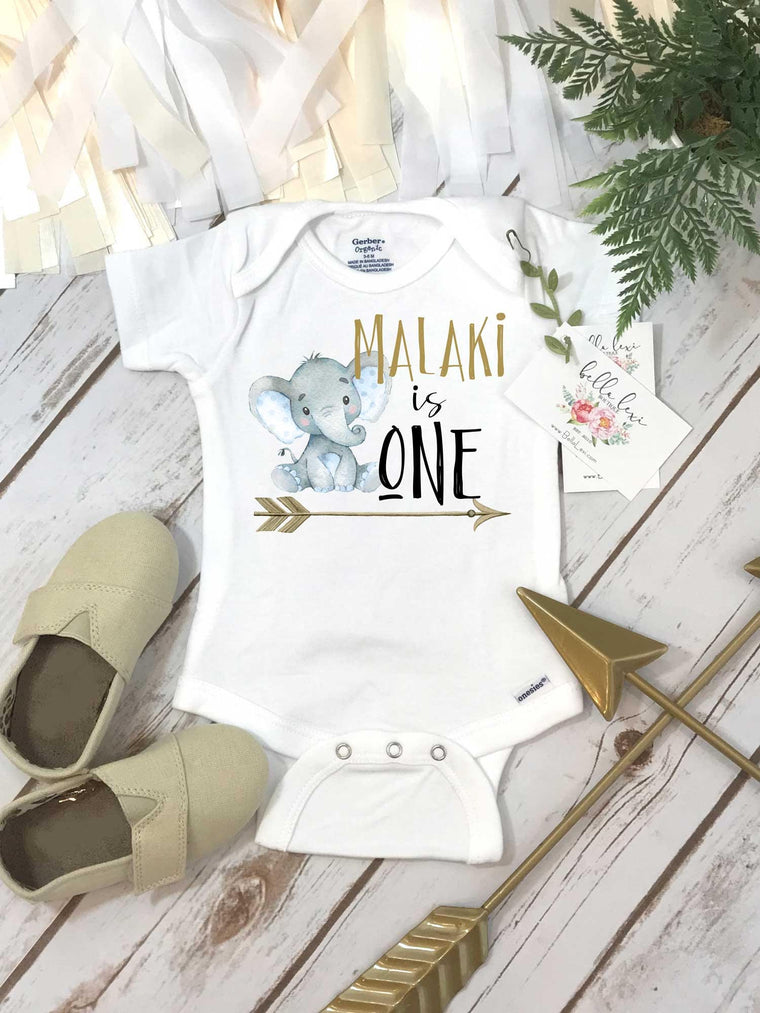 First Birthday, Elephant Theme, Birthday Shirt, 1st Birthday, Personalized Birthday Shirt
