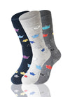 ASSORTED Paper Boat 3 Pack Novelty Socks - URBANCREWS