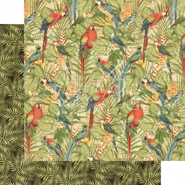 Graphic 45 SAFARI ADVENTURE 12x12 Scrapbook Cardstock Paper - Birds of a Feather