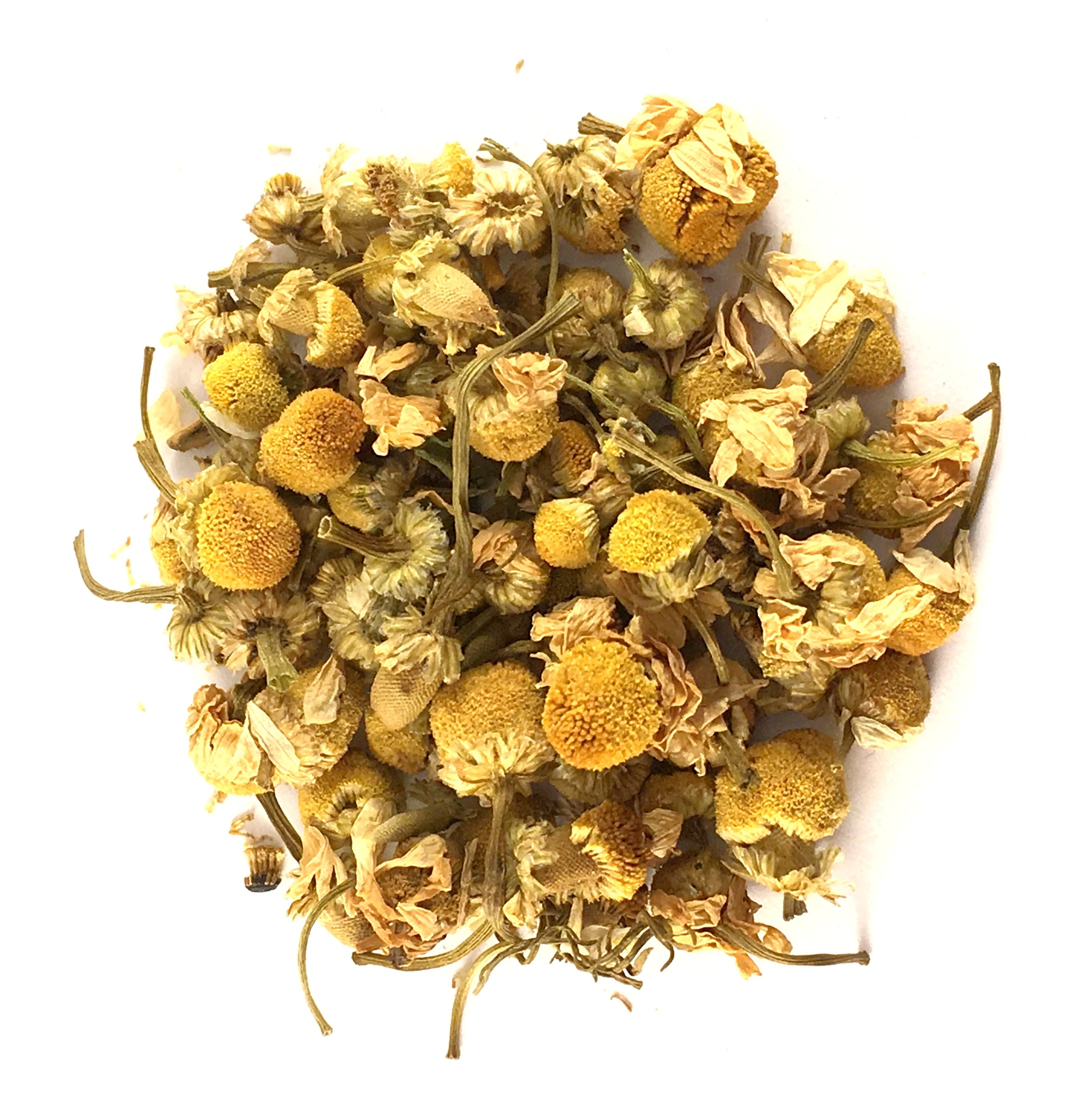 Chamomile - Egyptian Flowers