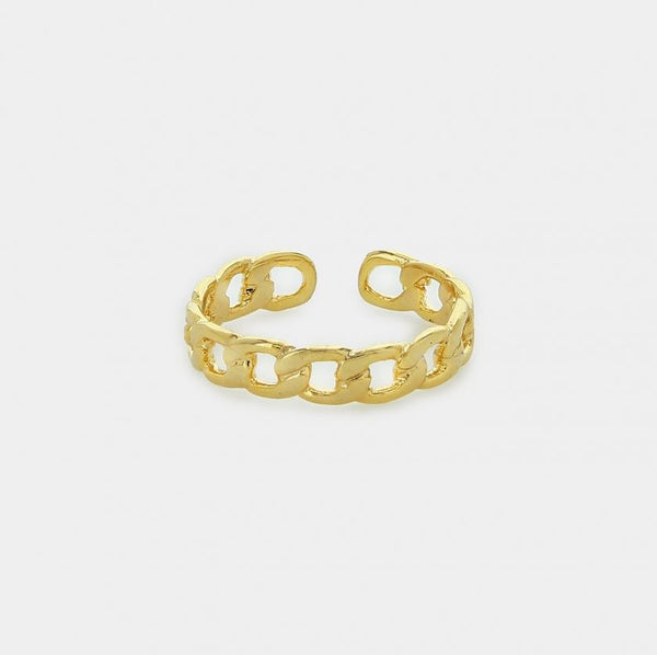 Payton Gold Narrow Chain Ring - One Size