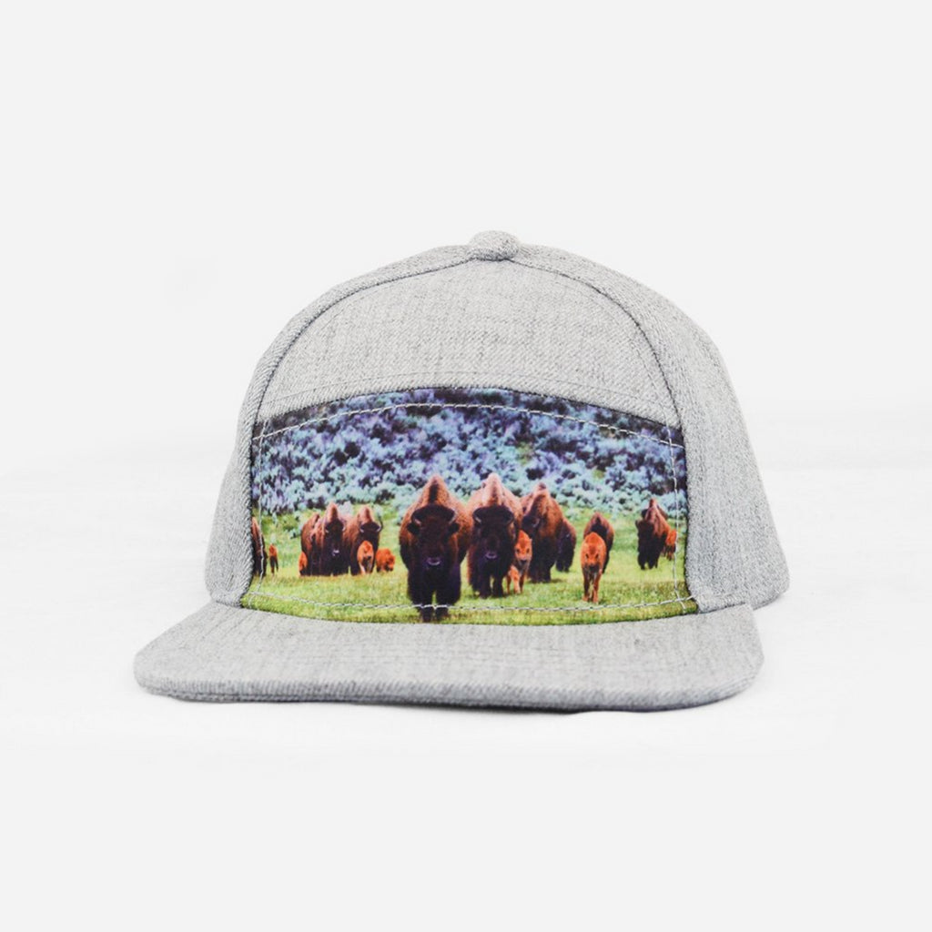 587a46a86d2 Bison Snapback – The Blueberry Hill