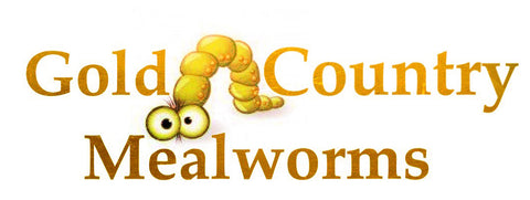 Gold Coutry Mealworms