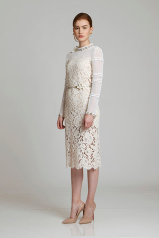 Eria Lace Paneled Dress